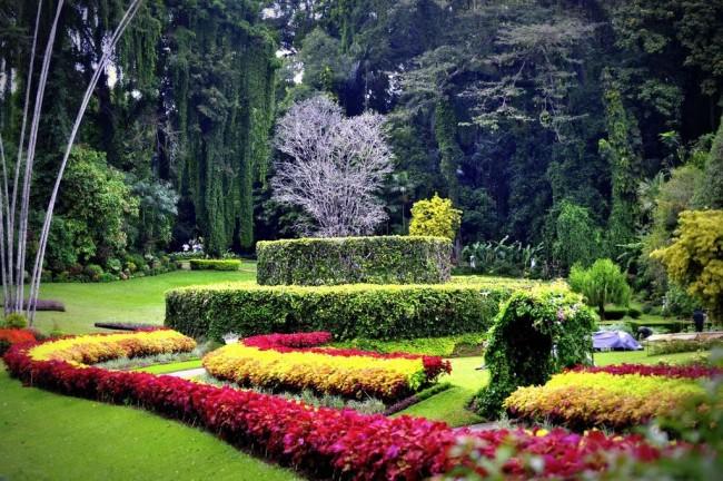 Брисбен – курорт с парками и небоскребами