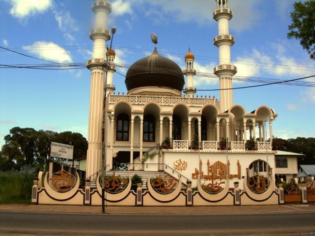 Парамарибо – город среди лесов